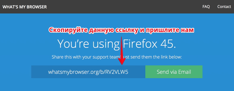 Check your browser version